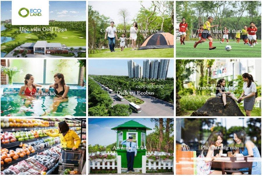 Chung Cu Thuy Tien Boutique Ecopark